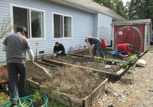 Pioneer Transition House residents and staff working on garden.